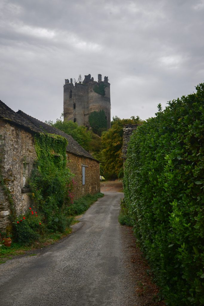 Chateau de Roumégous