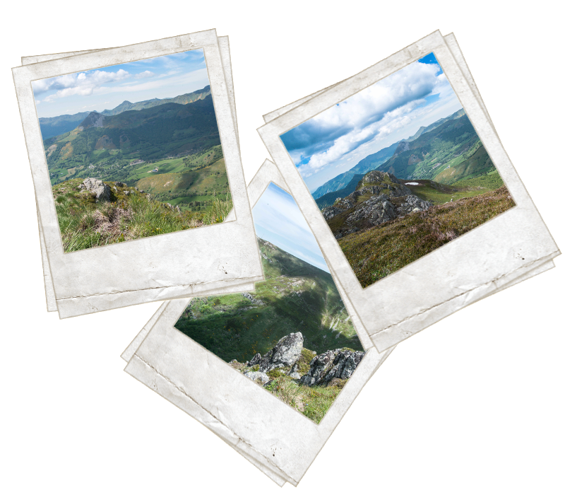 Polaroids Cantal
