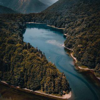 📍Monténégro 🇲🇪 Biogradska gora national park 🥰 . Ce roadtrip de 15jours dans ce petit pays des balkans était top ! Chaque jour un nouvel endroit, une nouvelle découverte, de nouvelles rencontres ! On ne s'est pas arrêté. 😅 c'était vraiment génial mais épuisant aussi 🤣 . . Vous êtes plutôt chill ou à fond pendant vos vacances ? Racontez nous tout ça juste en dessous en commentaire 🙃 . Vous retrouvez tout notre itinéraire détaillé sur notre blog 😀 . . . #montenegro #montenegro🇲🇪 #biogradskagora #podgorica #balkans #europe #europetravel #nature  #wild #igerseurope #montenegrowildbeauty #europe_pics #europa #blogger #blogvoyage #voyageursdumonde #decouvrirlemonde #niksic #budva #bar #nikon #sigma #europe_pics #europedestinations #montenegroairlines #durmitor
