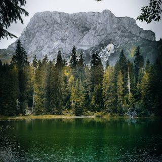 📍Lac des Serpents- Monténégro 🇰🇬 . Au cœur du Massif du Durmitor, après s'être enfoncé dans la forêt sombre et quelques km de marches, l'horizon se dégage et d'un coup, ce magnifique lac s'offre à nous. Comme une fenêtre dans le paysage, on découvre ce lieu splendide et une brèche au milieu des sapins permet d'admirer les montagnes 🥰 .  Pour renforcer ce côté enchanteur, il faut rajouter la légende autour de ce lac. Le durmitor était rempli de serpents. Un rude hiver, les serpents sont venus ici pour trouver un endroit plus chaud mais l'hiver était trop froid  l'ensemble des serpents a disparu 🐍 la fonte des neiges a creece lac et l'eau avec le reflet des sapins environnants donne un aspect à l'eau de peau de serpent. . . . 🚨 Annonce de la fin de la restriction des 10km !  Ou avez vous prévu d'aller ? 😀😀 . . . #durmitor #durmitornationalpark #montenegro #montenegro🇲🇪 #montagne #europe #europetravel #europetrip #balkans #visitmontenegro #lac #outtrip #jpeuxpasjairando #lonelyplanet #travel #travelphotography #outdoors #podgorica #bobotovkuk #europa #igerseurope #european #europe_gallery