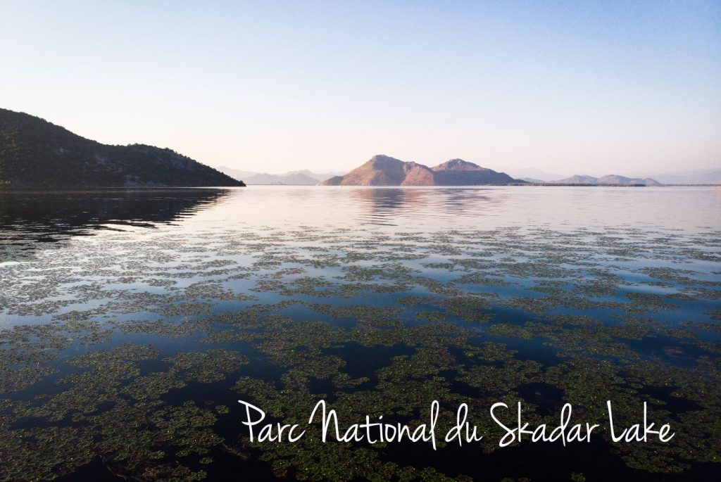 Parc National du Skadar Lake